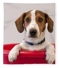 Potted Beagle Fleece Blanket
