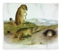 Prairie Dog, Prairie Marmot-squirrel Fleece Blanket