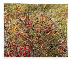 Prairie Rosehips Fleece Blanket