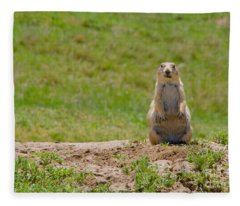 Prairie Sentinel Fleece Blanket