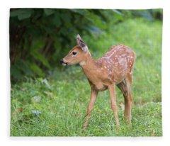 Precious Fleece Blanket