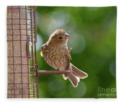 Preening Fleece Blanket