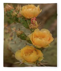 Prickly Pear Blossom Trio Fleece Blanket