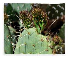 Prickly Pear Buds Fleece Blanket