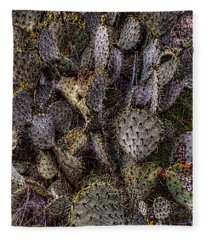 Prickly Pear Cactus At Tonto National Monument Fleece Blanket