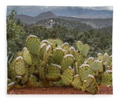 Cactus Country Fleece Blanket