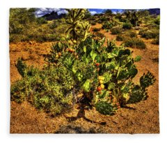 Prickly Pear In Bloom With Brittlebush And Cholla For Company Fleece Blanket