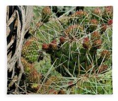 Prickly Pear Revival Fleece Blanket