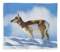 Pronghorn Doe On Snowy Ridge Fleece Blanket