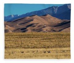 Pronghorn Sunrise Fleece Blanket
