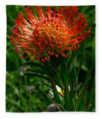 Protea Burst Fleece Blanket