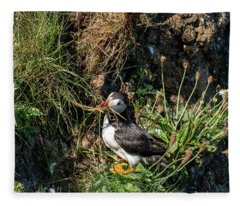 Puffin On Cliff Edge Fleece Blanket
