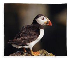 Puffin On Rock Fleece Blanket