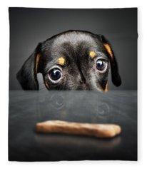 Puppy Longing For A Treat Fleece Blanket