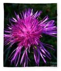 Purple Dandelions 4 Fleece Blanket