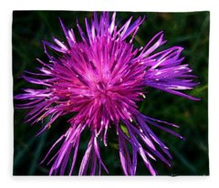 Purple Dandelions 4 Fleece Blanket