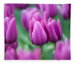 Purple Tulips Of Keukenhof Fleece Blanket