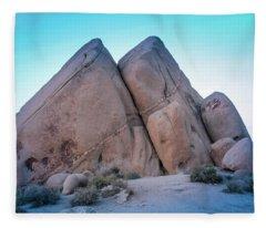Pyramids At Live Oak Fleece Blanket
