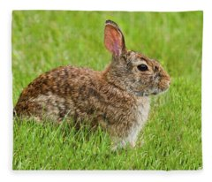 Rabbit In A Grassy Meadow Fleece Blanket