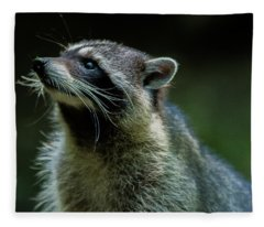 Raccoon 1 Fleece Blanket