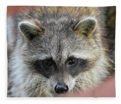 Raccoon's Gorgeous Face Fleece Blanket