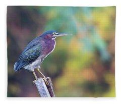 Rainbow Heron Fleece Blanket