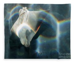 Rainbow Reflection Fleece Blanket