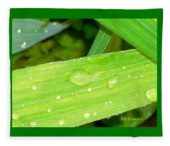 Raindrops Fleece Blanket