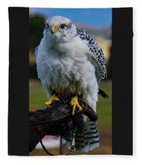 Ramona Hawk 1 Fleece Blanket