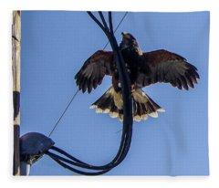 Ramona Hawk 5 Fleece Blanket
