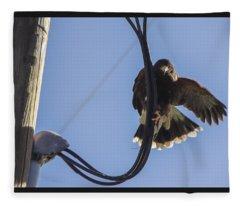 Ramona Hawk 8 Fleece Blanket