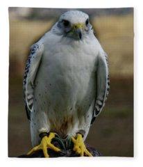 Ramona Hawk Watch 2 Fleece Blanket