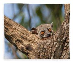 Randrianasolis Sportive Lemur Fleece Blanket