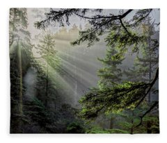 Morning Rays Through An Oregon Rain Forest Fleece Blanket