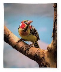 Red And Yellow Barbet Fleece Blanket