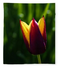 Red And Yellow Tulip Fleece Blanket