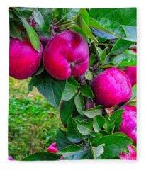 Red Apples Fleece Blanket