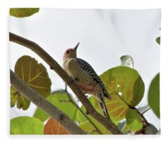 Red-bellied In The Seagrapes Fleece Blanket