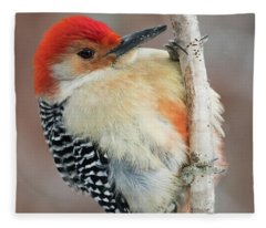 Red-bellied Woodpecker Fleece Blanket