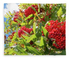 Red Berries, Blue Skies Fleece Blanket