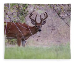 Red Bucks 2 Fleece Blanket
