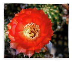 Red Cactus Bloom Fleece Blanket