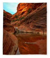 Red Cliffs Reflections Fleece Blanket