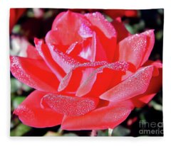 Red - Dew Covered  - Rose Fleece Blanket