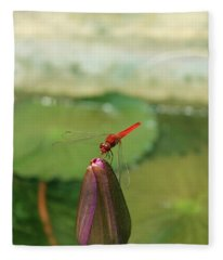 Red Dragonfly At Lady Buddha Fleece Blanket