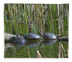 Red Eared Slider Turtles Fleece Blanket