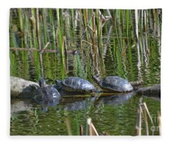 Red Eared Slider Turtles Fleece Blanket