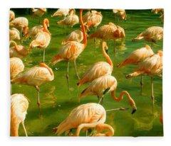 Red Florida Flamingos In Green Water Fleece Blanket