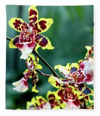 Striped Maroon And Yellow Orchid Fleece Blanket