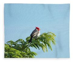 Red-headed Cardinal On A Branch Fleece Blanket